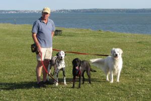 Pet Care Business Opportunities